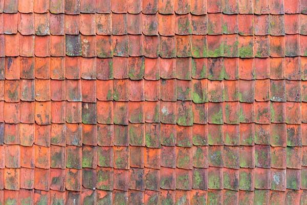 Sanierung und Dachdeckung